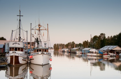 Ladner harbour
