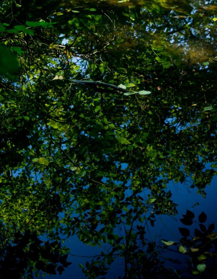 Slow stream reflection