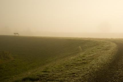 Fraser River fog