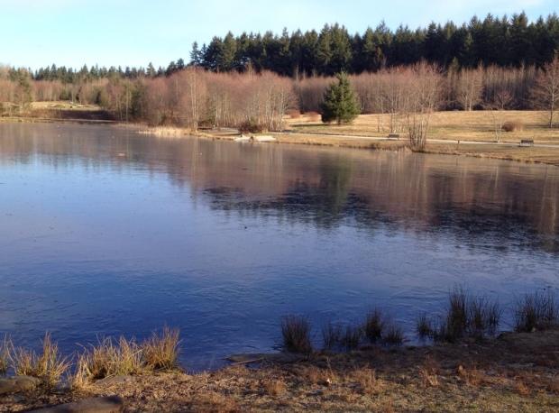 Ice at GT lake
