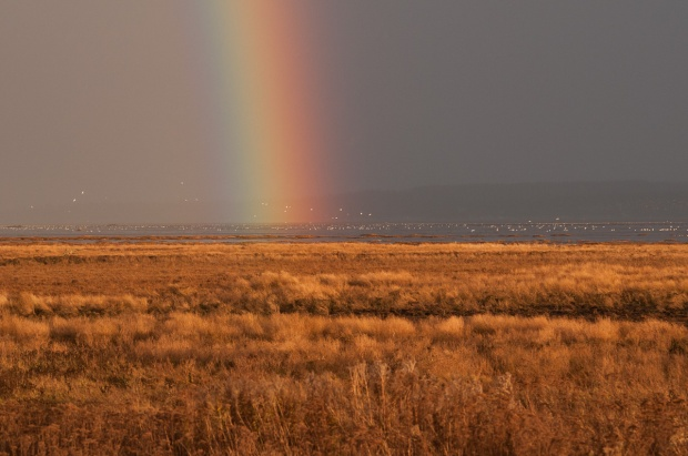 Rainbow on Boundary Bay