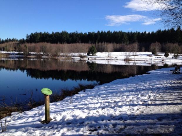 Snow at Green Timbers Lake