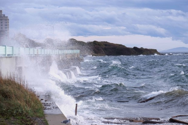 Waves captured just east of the Ogden Pt breakwater.